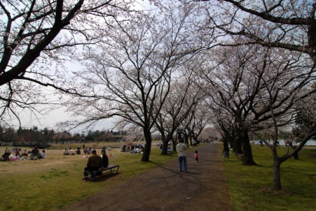 20070407a.jpg