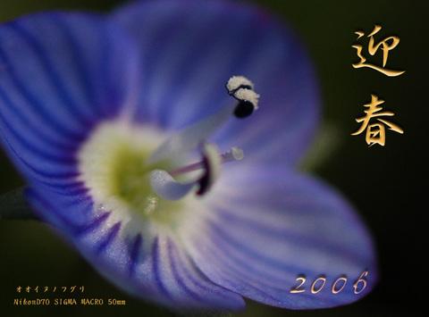 20060101